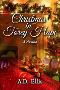Christmas in Torey Hope, A Novella