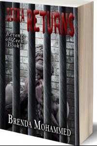 Zeeka Returns (Revenge of Zeeka Book 3)