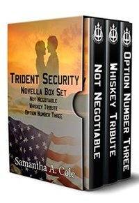 Trident Security Series - Novella Set