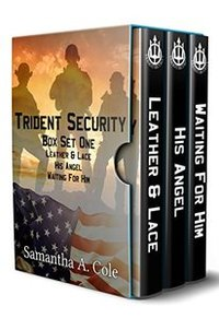 Trident Security Series - Book Set One: Leather & Lace; His Angel; Waiting For Him