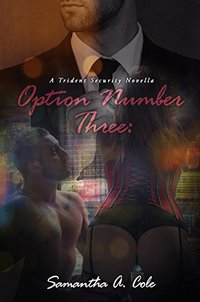 Option Number Three: A Trident Security Novella - Book 7.5