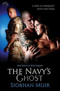 The Navy's Ghost (Bad Boys of Beta Squad Book 1)