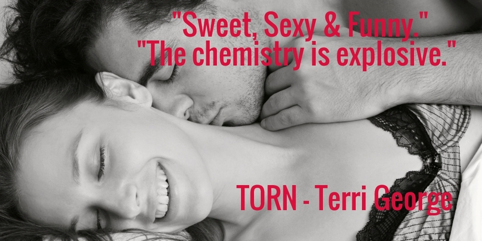 sweet sexy funny the chemistry is explosive torn terri george...