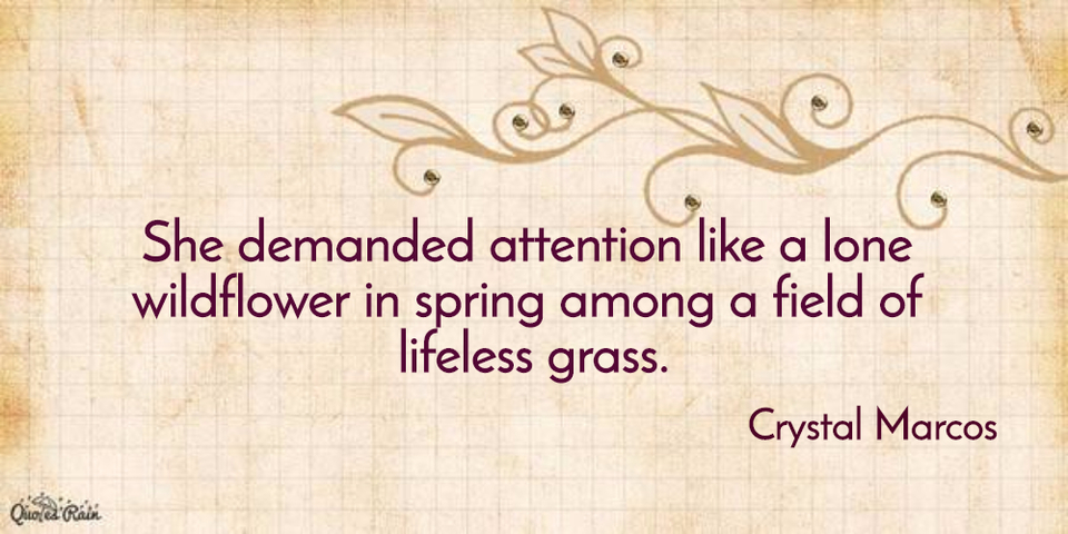 she demanded attention like a lone wildflower in spring among a field of lifeless grass...