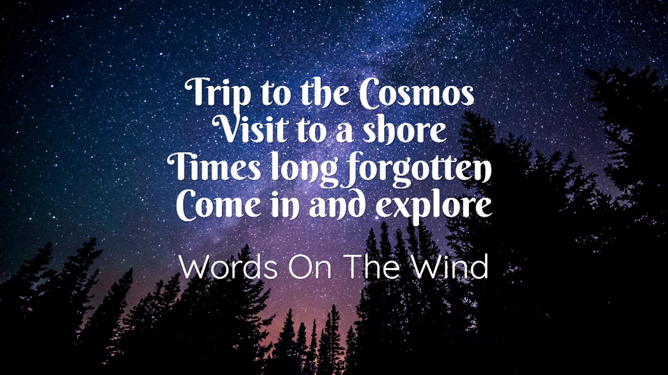1486744977610-trip-to-the-cosmos-visit-to-a-shore-times-long-forgotten-come-in-and-explore.jpg