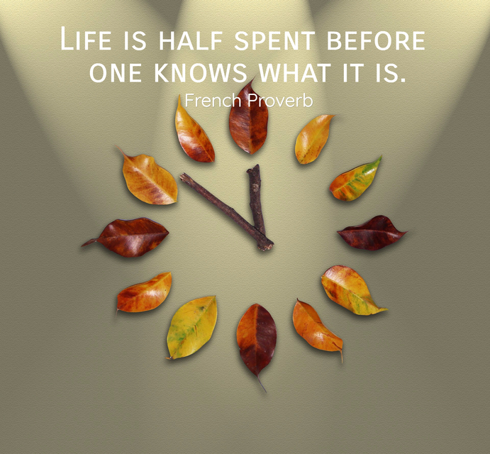 life is half spent before one knows what it is...