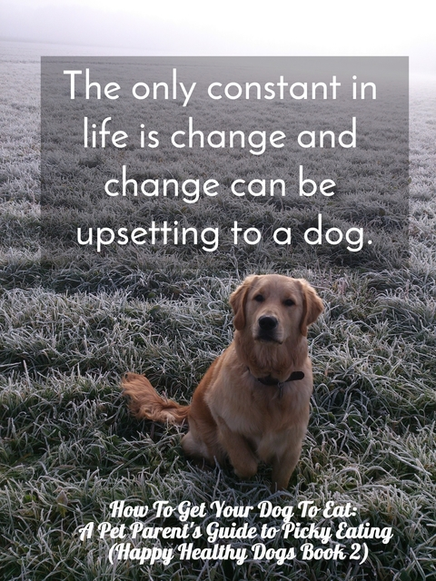 the only constant in life is change and change can be upsetting to a dog...