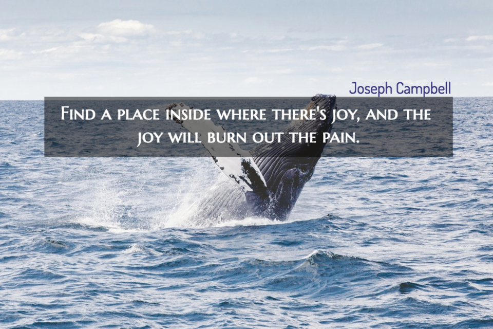 find a place inside where theres joy and the joy will burn out the pain...