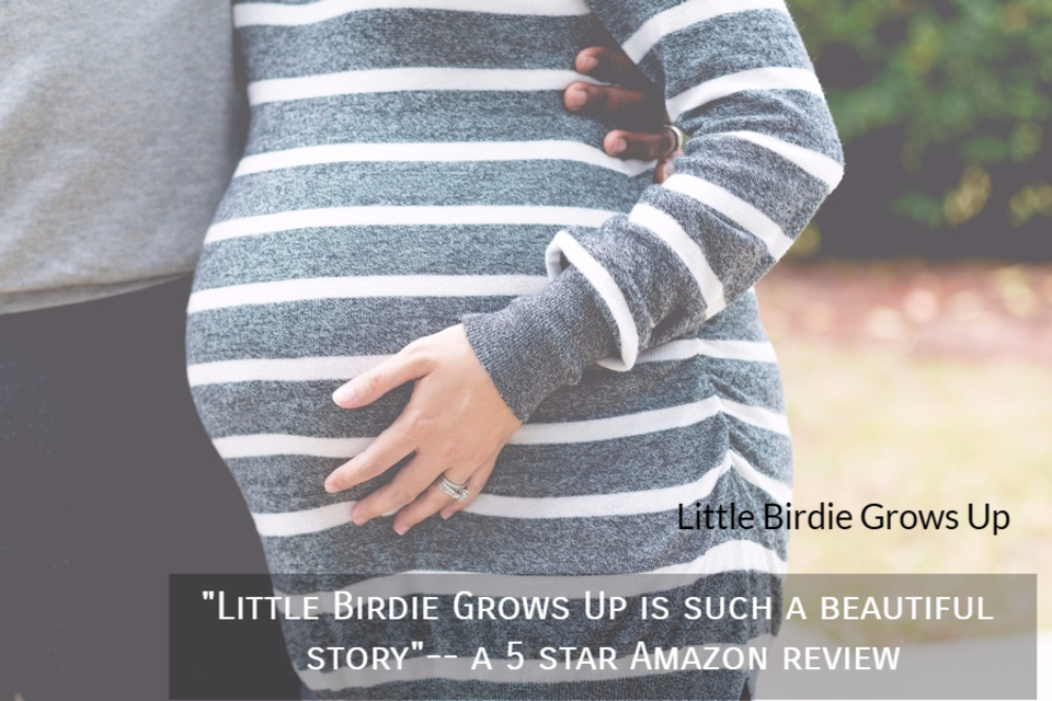 1512749758697-little-birdie-grows-up-is-such-a-beautiful-story-a-5-star-amazon-review.jpg