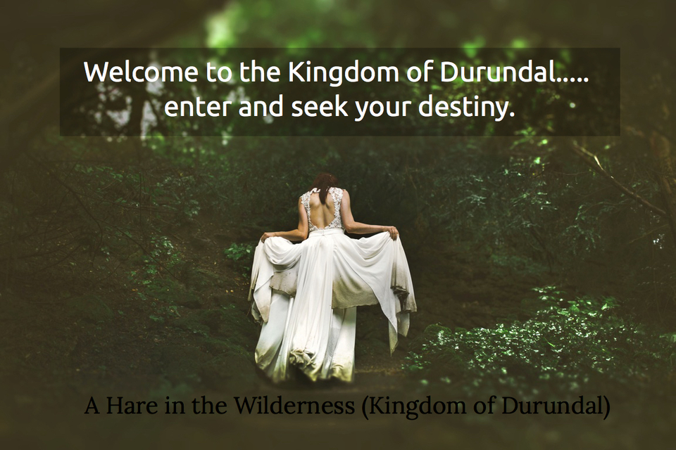 welcome to the kingdom of durundal enter and seek your destiny...