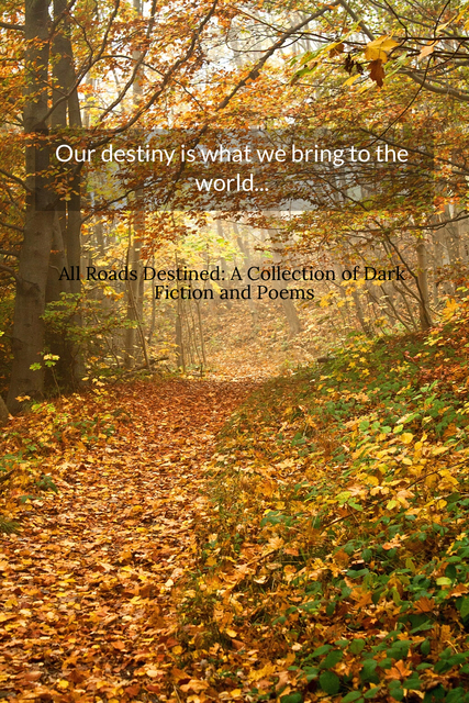 1515950260216-our-destiny-is-what-we-bring-to-the-world-enter-a-world-of-dark-fiction-short-stories.jpg