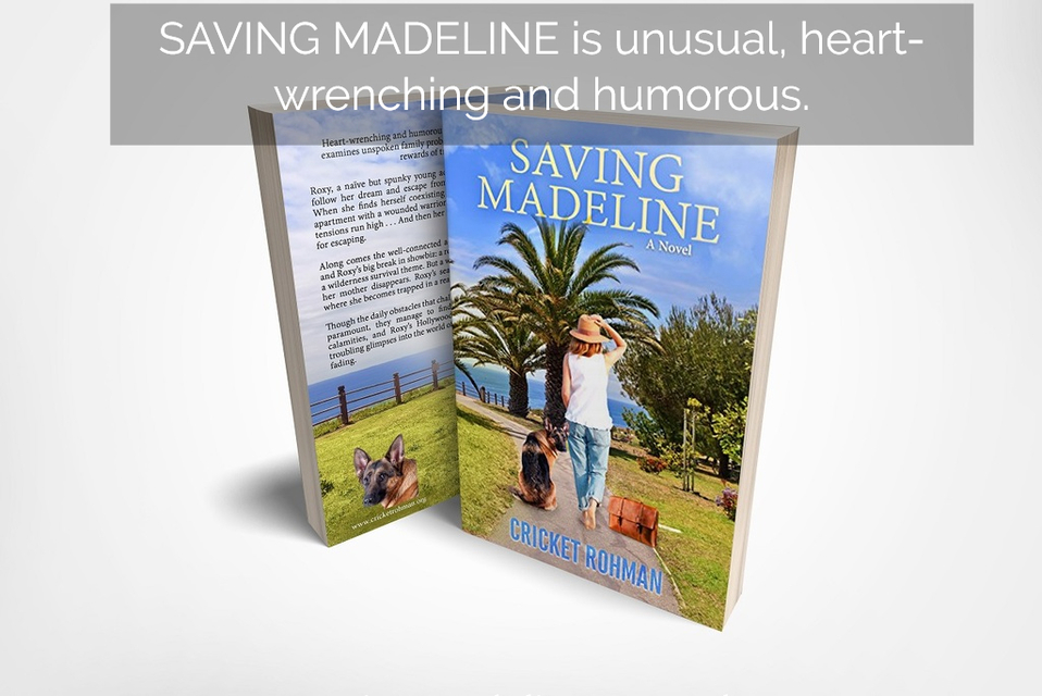 1516479299310-saving-madeline-is-unusual-heart-wrenching-and-humorous.jpg