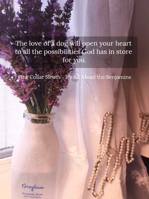 1517244780623-the-love-of-a-dog-will-open-your-heart-to-all-the-possibilities-god-has-in-store-for-you.jpg