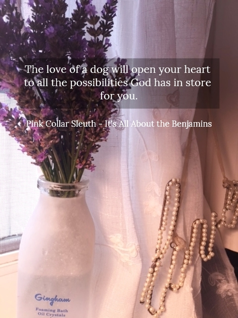1517244882776-the-love-of-a-dog-will-open-your-heart-to-all-the-possibilities-god-has-in-store-for-you.jpg