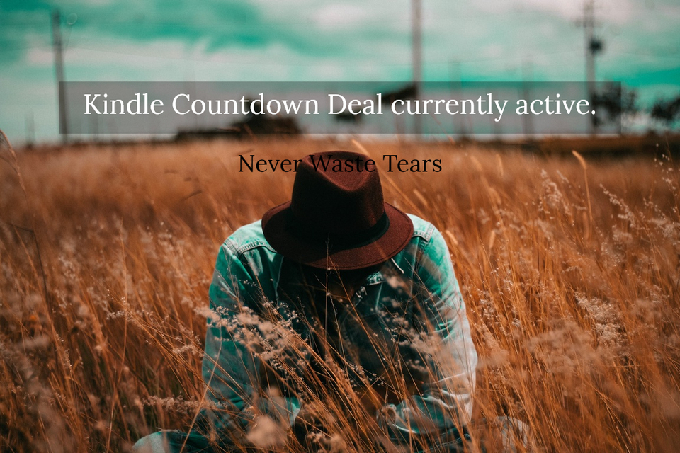 kindle countdown deal currently active...