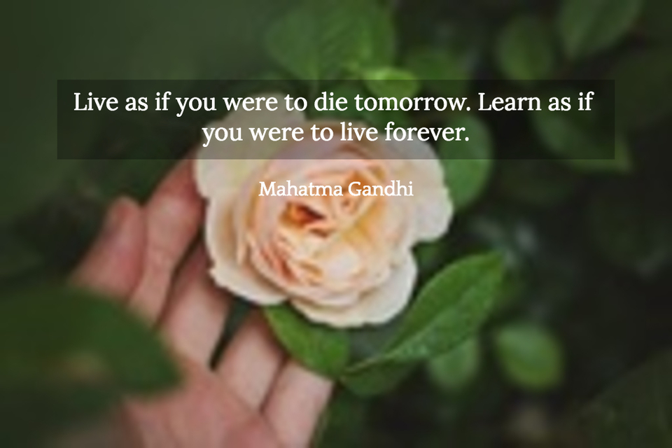 live as if you were to die tomorrow learn as if you were to live forever...