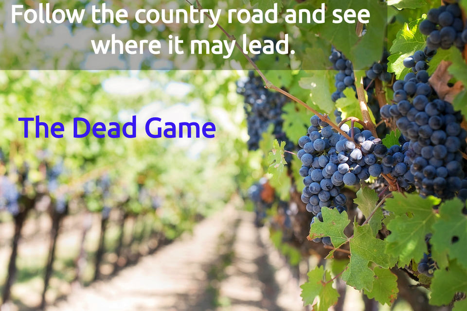 follow the country road and see where it may lead...