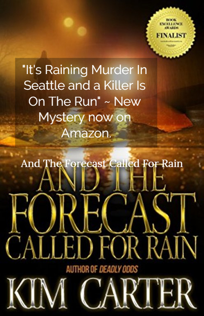 1535130125213-its-raining-murder-in-seattle-and-a-killer-is-on-the-run.jpg