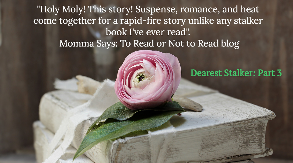1548686494365-holy-moly-this-story-suspense-romance-and-heat-come-together-for-a-rapid-fire-story.jpg