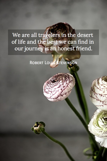 1548836506110-we-are-all-travelers-in-the-desert-of-life-and-the-best-we-can-find-in-our-journey-is-an.jpg
