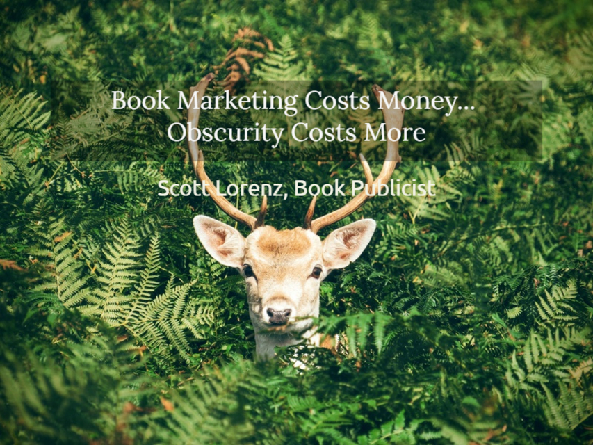 1550958470429-book-marketing-costs-money-obscurity-costs-more.jpg