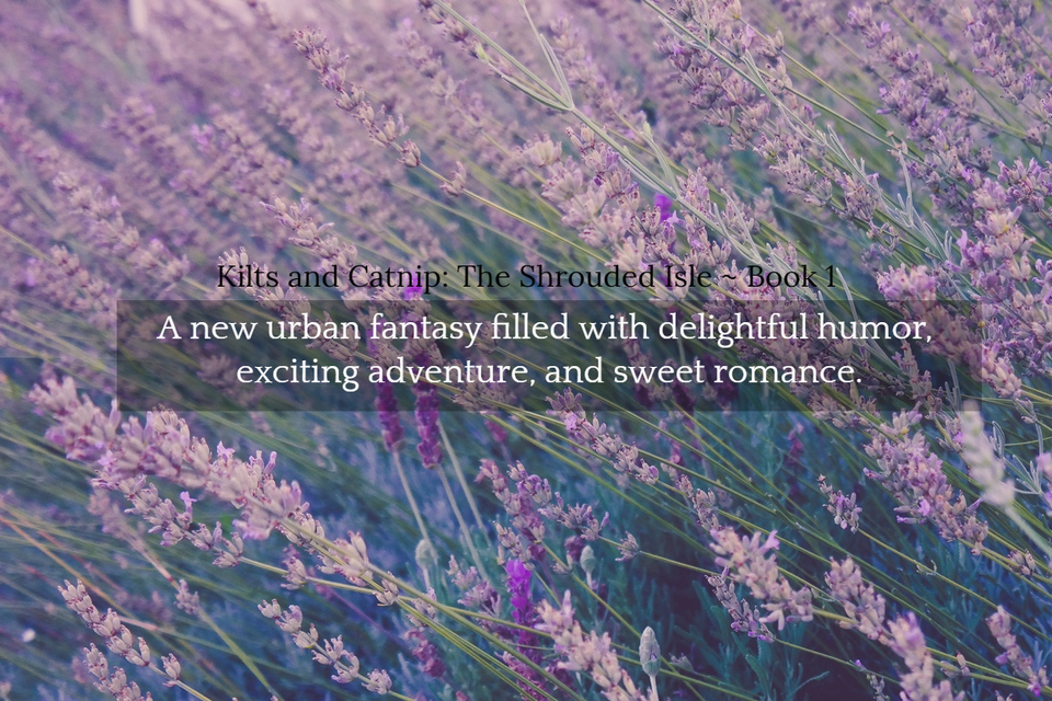 1561244306220-a-new-urban-fantasy-filled-with-delightful-humor-exciting-adventure-and-sweet-romance.jpg
