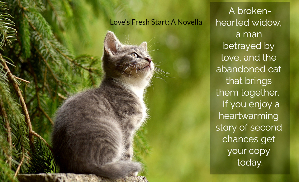 1564094680651-a-broken-hearted-widow-a-man-betrayed-by-love-and-the-abandoned-cat-that-brings-them.jpg