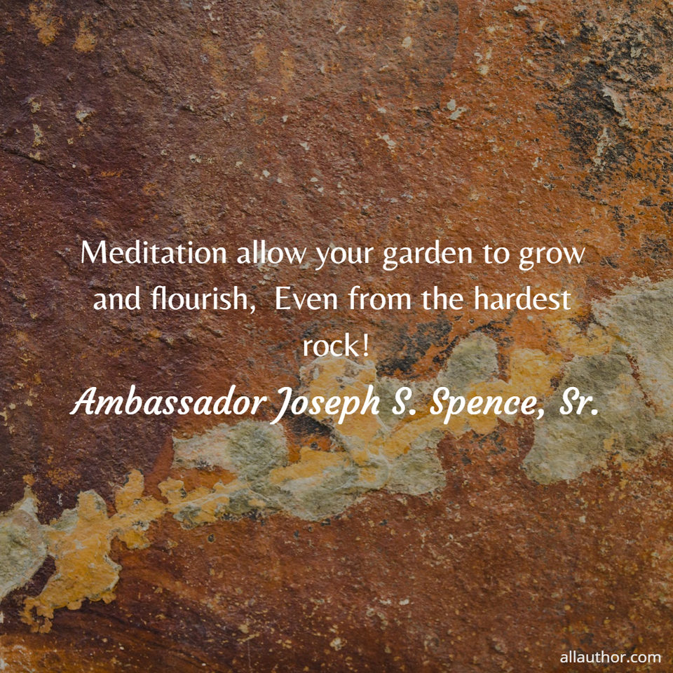 1575118257345-meditation-allow-your-garden-to-grow-and-flourish-even-from-the-hardest-rock.jpg