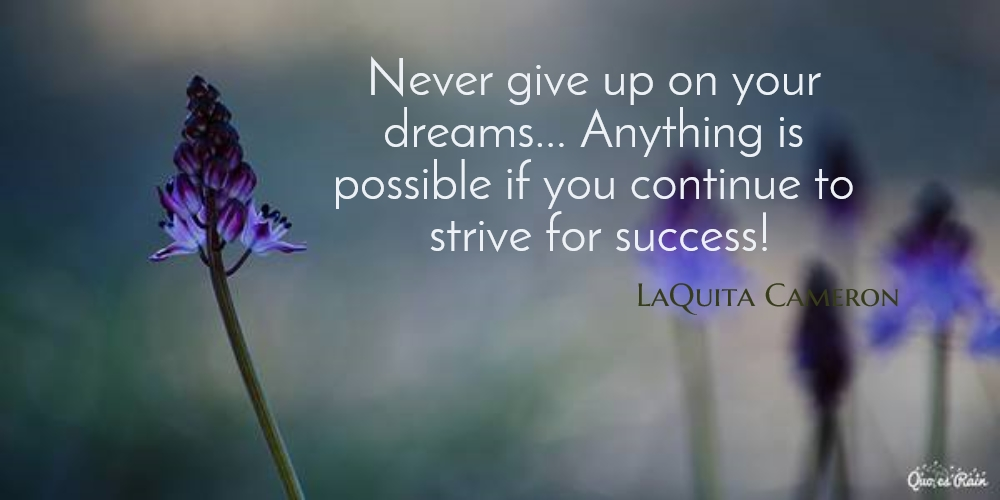 never give up on your dreams anything is picture quotes 339