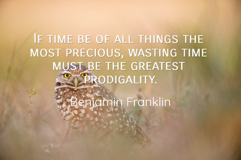 1490198074856-if-time-be-of-all-things-the-most-precious-wasting-time-must-be-the-greatest-prodigality.jpg