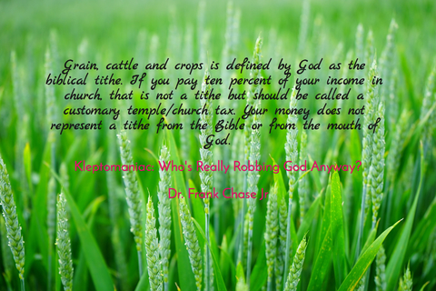 grain cattle and crops is the defined by god as a biblical tithe if you are paying ten...