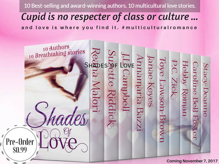 1508777371552-10-best-selling-and-award-winning-authors-10-multicultural-love-stories.jpg