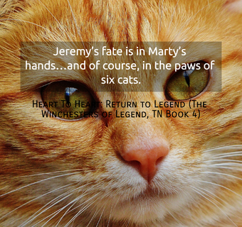 1523217257290-jeremys-fate-is-in-martys-handsand-of-course-in-the-paws-of-six-cats.jpg
