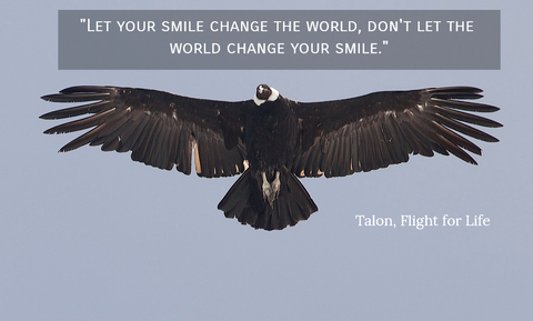 1523593483376-let-your-smile-change-the-world-dont-let-the-world-change-your-smile.jpg