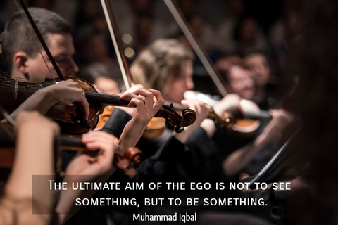 the ultimate aim of the ego is not to see something but to be something...