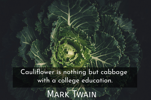 cauliflower is nothing but cabbage with a college education...