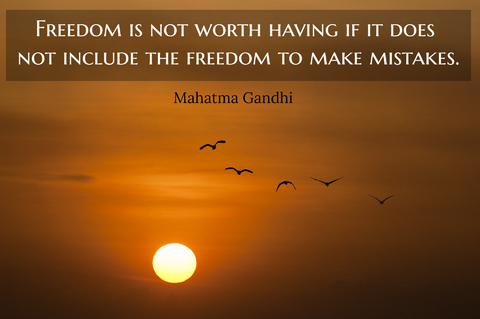 freedom is not worth having if it does not include the freedom to make mistakes...