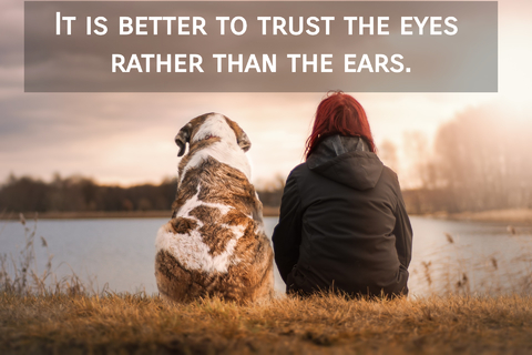 it is better to trust the eyes rather than the ears...
