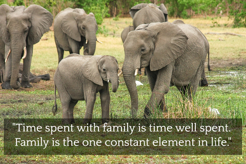 time spent with family is time well spent family is the one constant element in life...