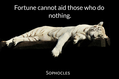 fortune cannot aid those who do nothing...