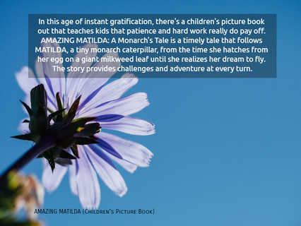 in this age of instant gratification theres a childrens picture book out that...