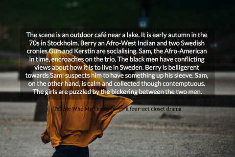 1546638520600-the-scene-is-an-outdoor-caf-near-a-lake-it-is-early-autumn-in-the-70s-in-stockholm.jpg
