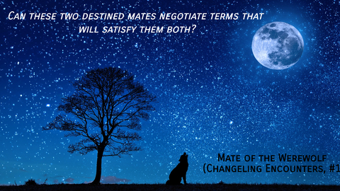 can these two destined mates negotiate terms that will satisfy them both...