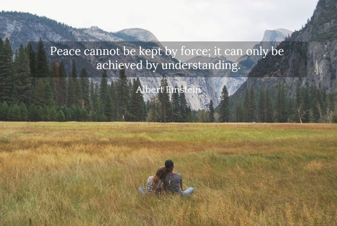 1549249938932-peace-cannot-be-kept-by-force-it-can-only-be-achieved-by-understanding.jpg
