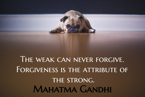 the weak can never forgive forgiveness is the attribute of the strong...