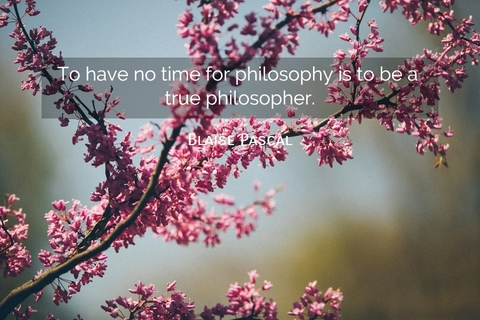 1549817449504-to-have-no-time-for-philosophy-is-to-be-a-true-philosopher.jpg