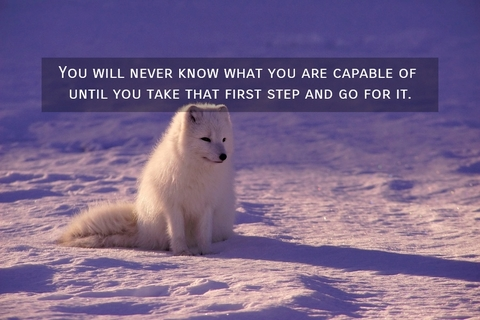 1549822534625-you-will-never-know-what-you-are-capable-of-until-you-take-that-first-step-and-go-for-it.jpg