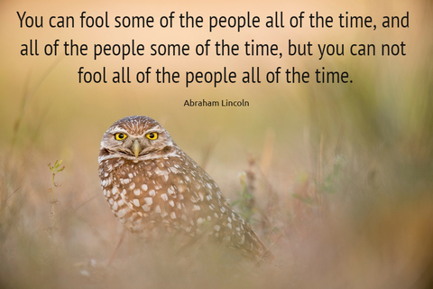 you can fool some of the people all of the time and all of the people some of the time...