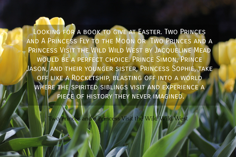 1554810418624-looking-for-a-book-to-give-at-easter-two-princes-and-a-princess-fly-to-the-moon-or-two.jpg