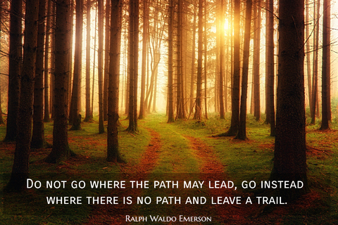 do not go where the path may lead go instead where there is no path and leave a trail...